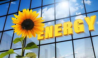 How to Improve the Energy Efficiency of Your Business